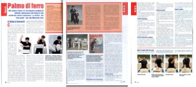 Articolo Iron Palm - Samurai Gennaio 2011